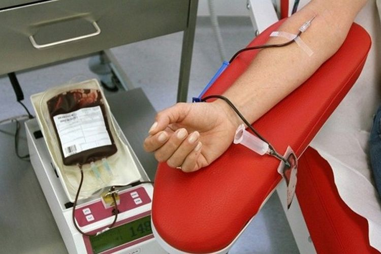 Donor Darah Pura Mayungan